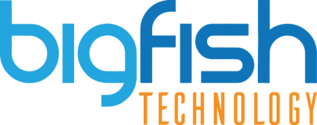 Big Fish Technology - Kingwood IT Service Provider